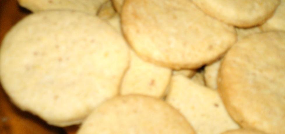 Ciastka ze skwarkami (autor: ela15)