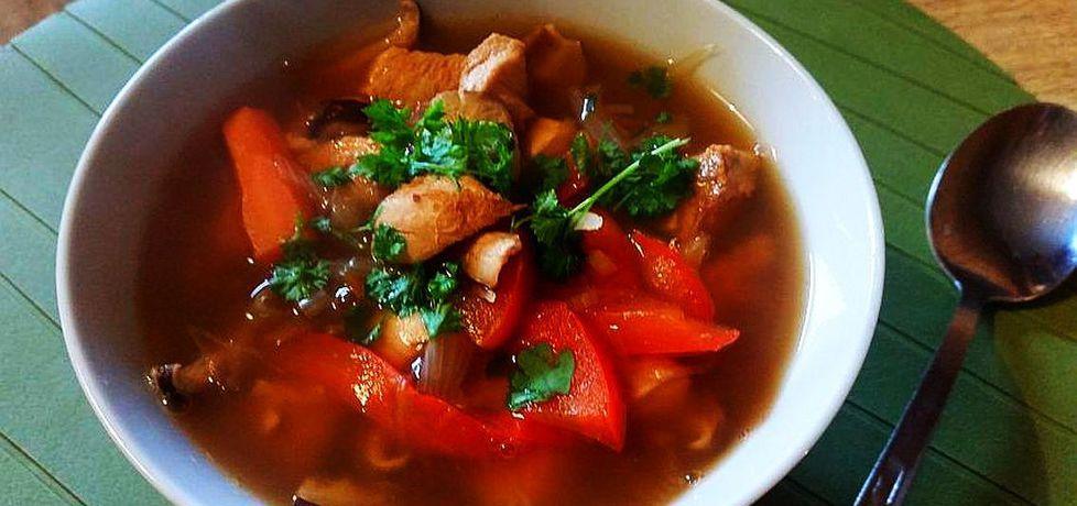 Azjatycka zupa z kurczakiem (autor: idealme)