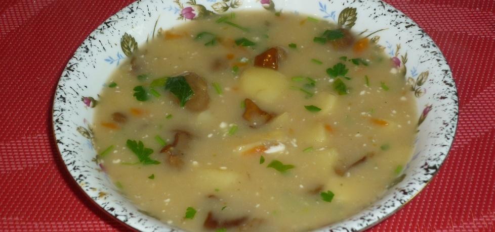Zupa grzybowa z natką i śmietaną (autor: wafelek2601 ...