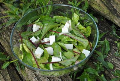 Letnia sałatka z botwinką
