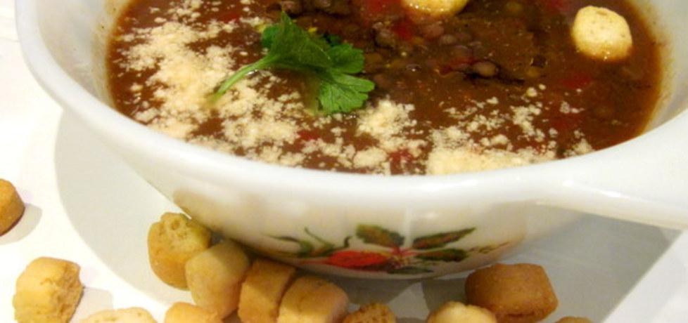 Zupa-krem z soczewicy i pomidorów (autor: cris04)