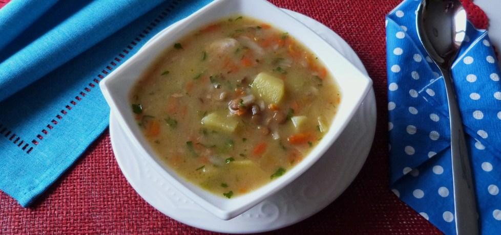 Zupa warzywna z soczewicą (autor: renatazet)