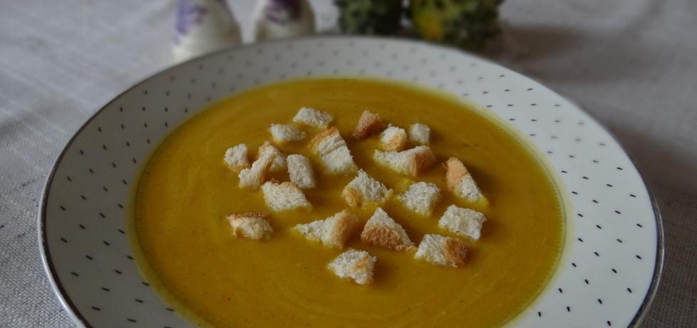 Kremowa zupa z dyni (autor: megg)