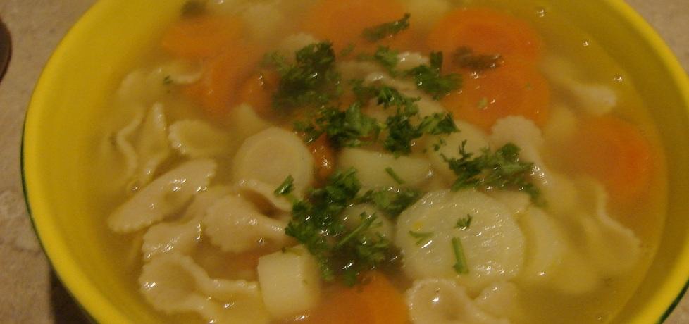 Zupa warzywna z pełnoziarnistym makaronem (autor: motorek ...