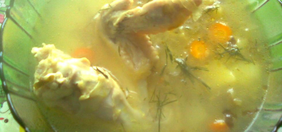 Zupa ogórkowa skrzydlata (autor: emilia22)