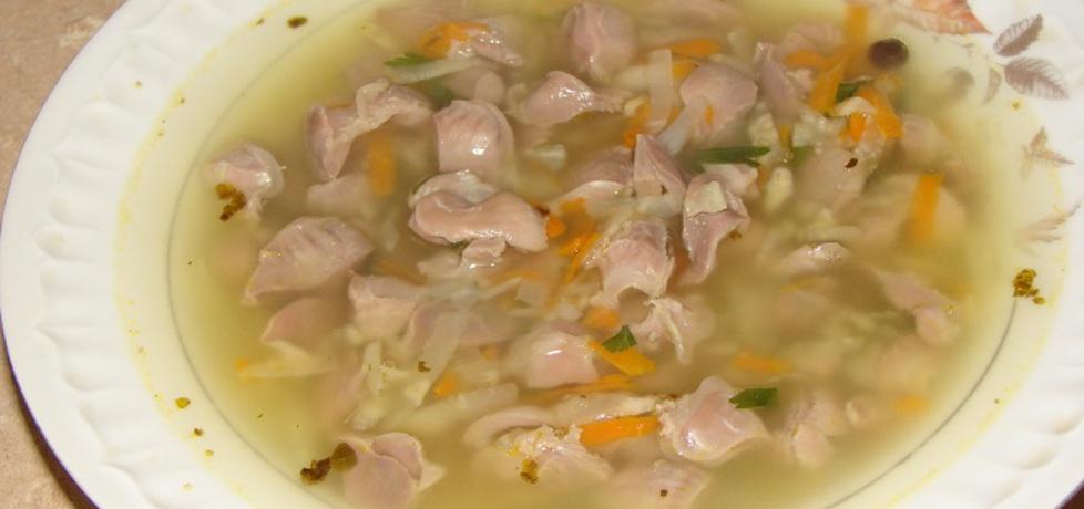 Zupa z żołądków drobiowych (autor: motorek)