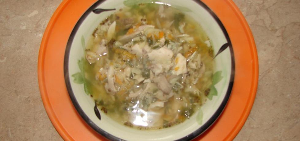 Zupa drobiowa (autor: motorek)
