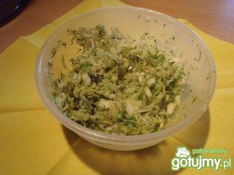 Dodatki do potraw: surówka z młodej kiszonej kapusty