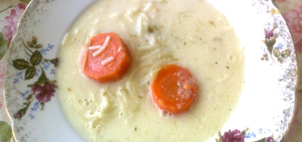 Zupa ogórkowa z makaronem (autor: katarzyna59)