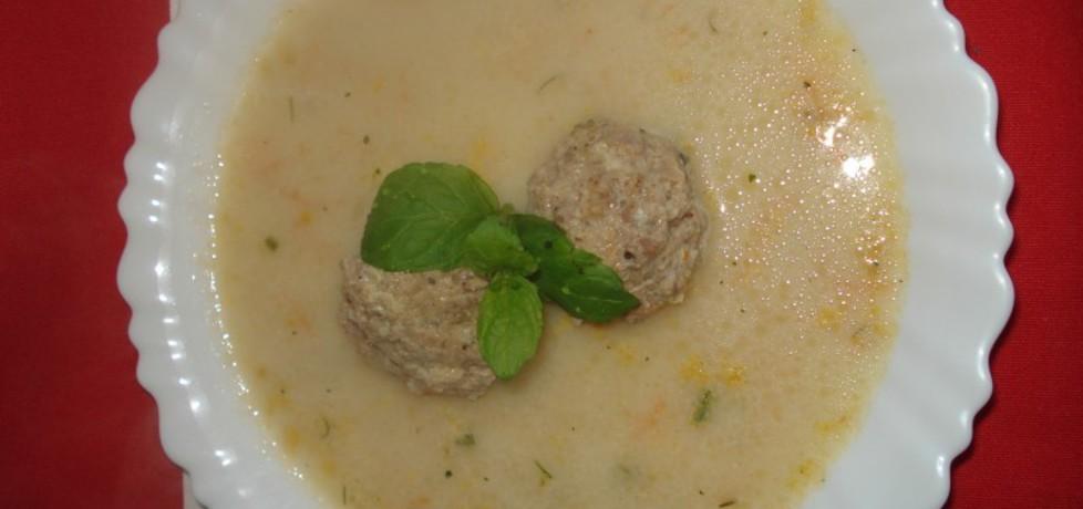 Zupa klopsowa z koperkiem i ziemniakami (autor: norweska20 ...