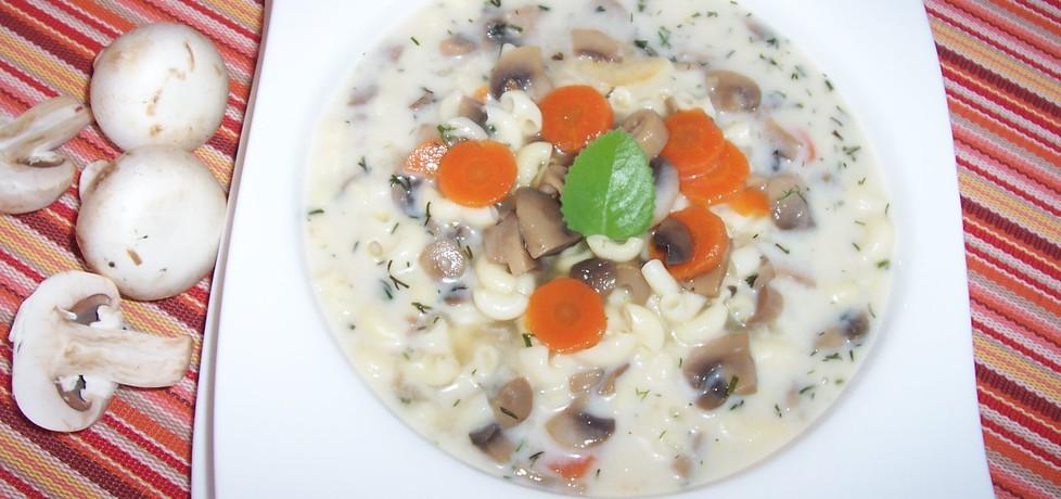 Zupa pieczarkowa z jogurtem (autor: pestka)