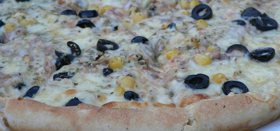Pizza wegetariańska (autor: goofy9)