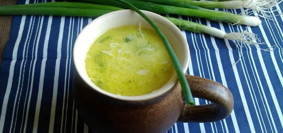 Duńska zupa porowa z zieloną cebulką (autor: konczi ...