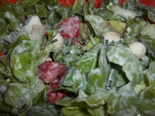 Sałatka z mozzarellą  sałatki