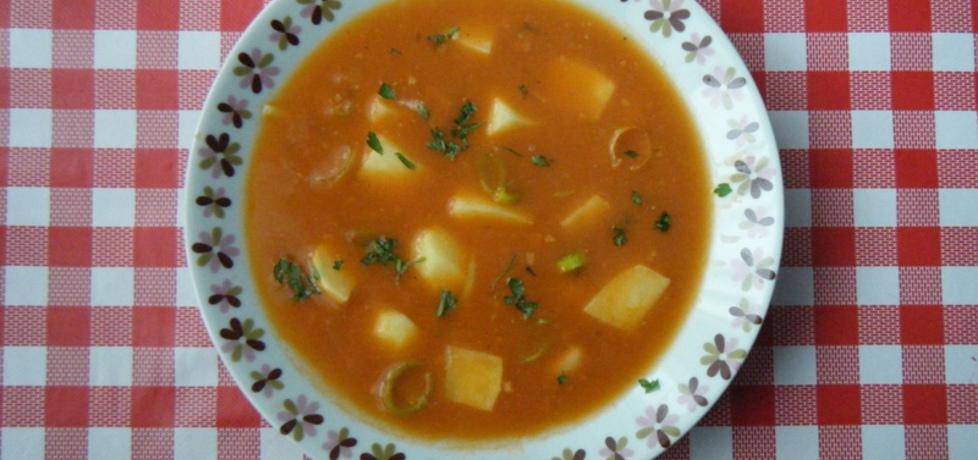 Zupa ziemniaczana z koncentratem pomidorowym (autor ...