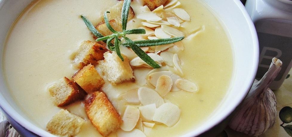 Zupa czosnkowa z grzankami i migdałami (autor: alaaa ...