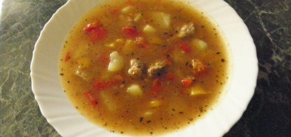 Zupa gulaszowa (autor: kejt2)