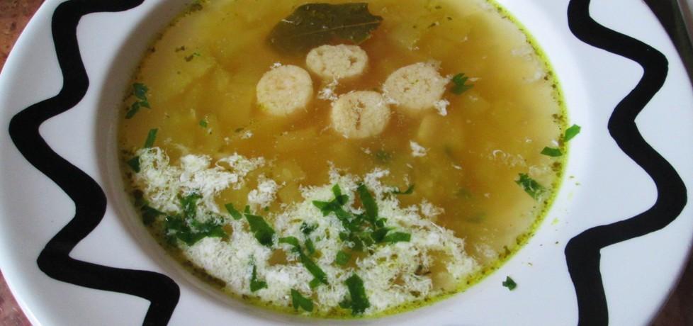 Szybka zupa ogórkowa (autor: katarzyna40)