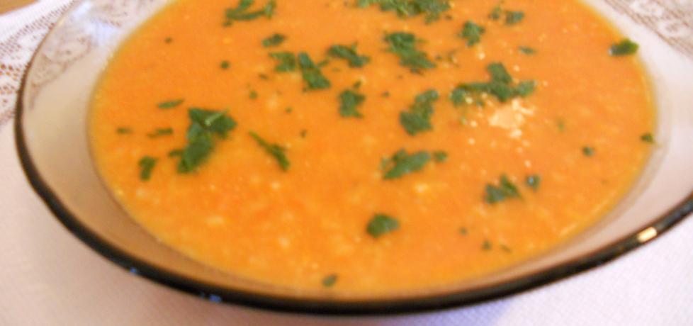 Zupa pomidorowa na rosole z ryżem (autor: elzbieta18 ...