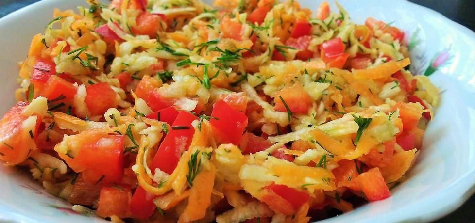 Kolorowa surówka warzywna (autor: futka)