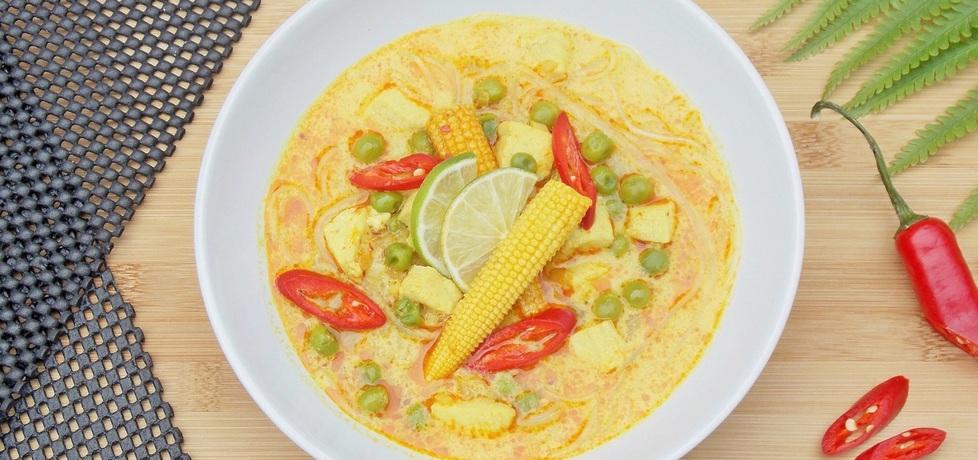 Azjatycka zupa z kurczakiem i czerwoną pastą curry (autor ...