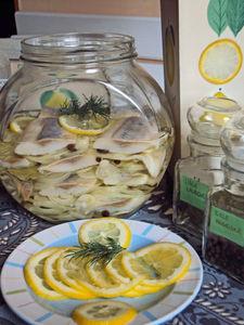 Śledzie w oleju z cytryną i cebulą