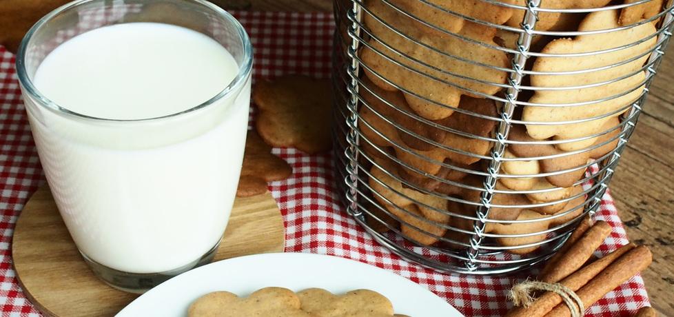 Ciasteczka miodowo-imbirowe (autor: aga3103)