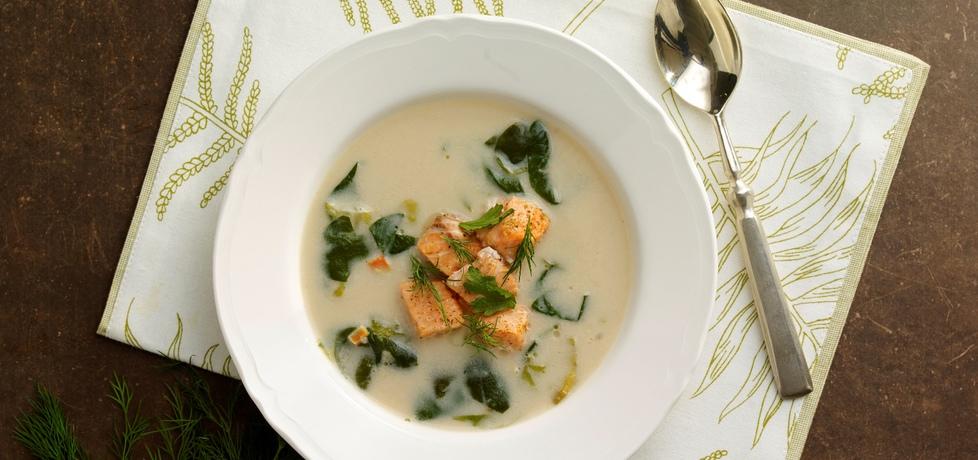 Zupa wiosenna z łososiem (autor: doradca-smaku)