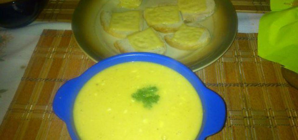Zupa dyniowa od hamrocyka (autor: mariel78)
