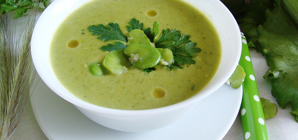 Aksamitna zupa z bobu sałaty i fasolki szparagowej (autor: 2milutka ...