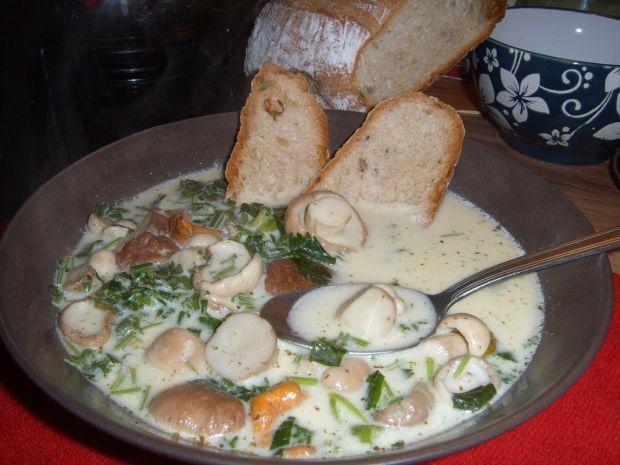 Przepis  kulajda czeska zupa grzybowa przepis