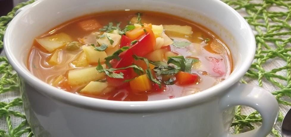 Zupa jarzynowa z papryką (autor: izabela29)