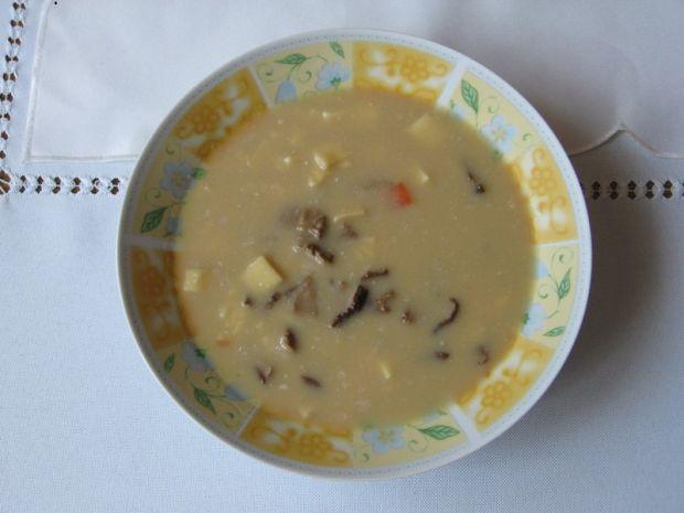 Przepis  zupa grzybowa z łazankami przepis