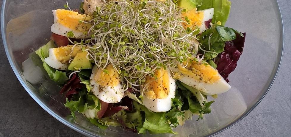 Sałatka z awokado, gorgonzolą, jajkiem i kiełkami (autor: ania321 ...