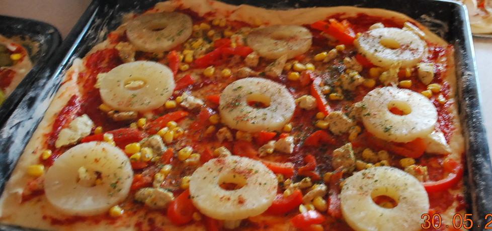 Pizza tropikalna  dodatki (autor: dorotka0000025)