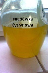 Miodówka cytrynowa