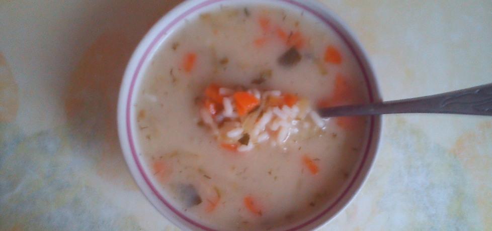 Zupa jarzynowa z ryżem (autor: monika156)