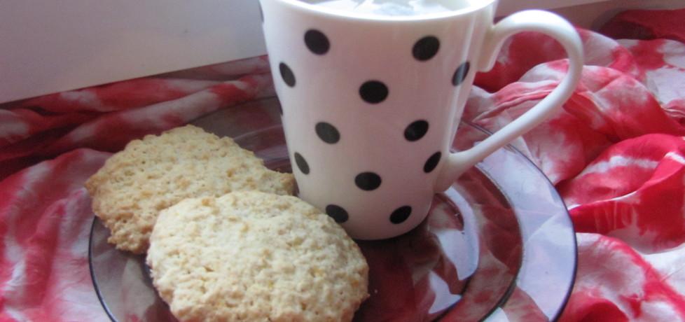 Ciasteczka budyniowo-owsiane (autor: sylwia