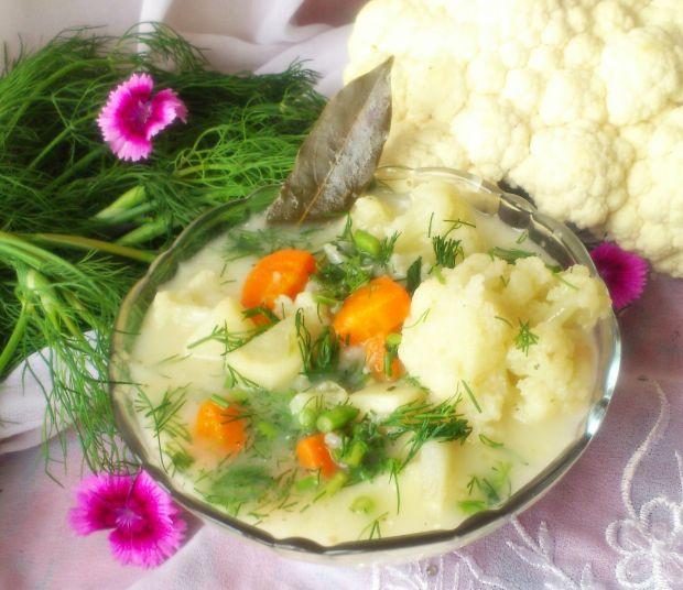 Przepis  zupa kalafiorowa z koperkiem przepis