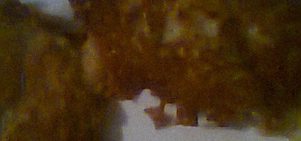 Placki ziemniaczane (autor: emilia22)