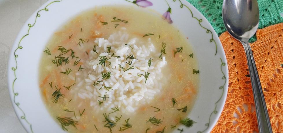 Zupa z selera naciowego z ryżem (autor: alexm)