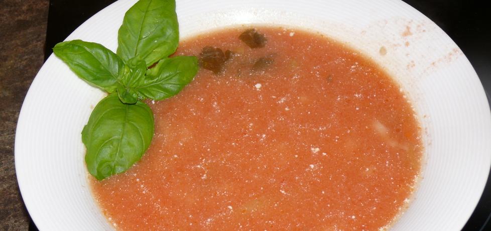 Pomidorówka z dinozaurami dla dzieci (autor: miodunka ...