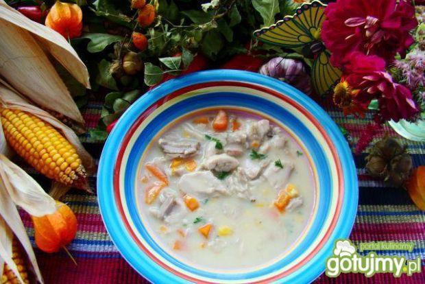 Przepis  pyszna zupa z kurczaka przepis