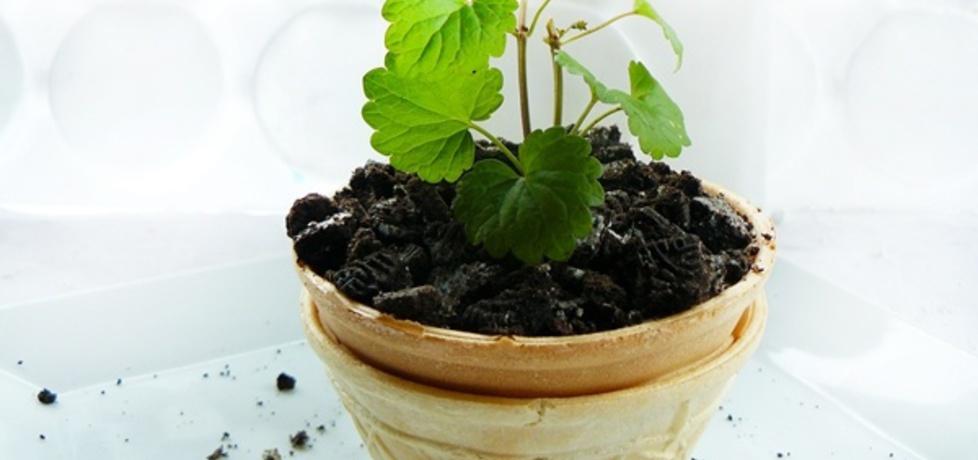 Deser ogrodnika (autor: ostra-na-slodko)