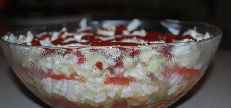 Salatka gyros wersja light (autor: dorotka0000025)