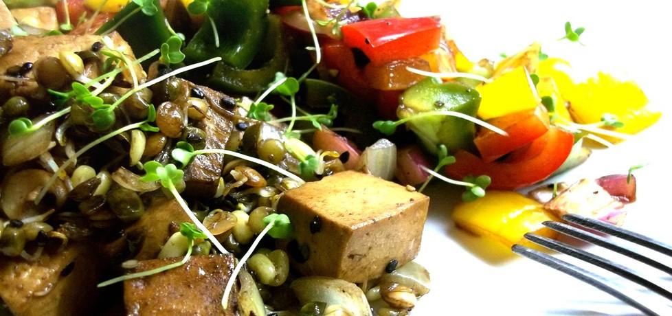 Tofu smażone ze skiełkowanymi strączkowymi i sałatką z kolorowej ...