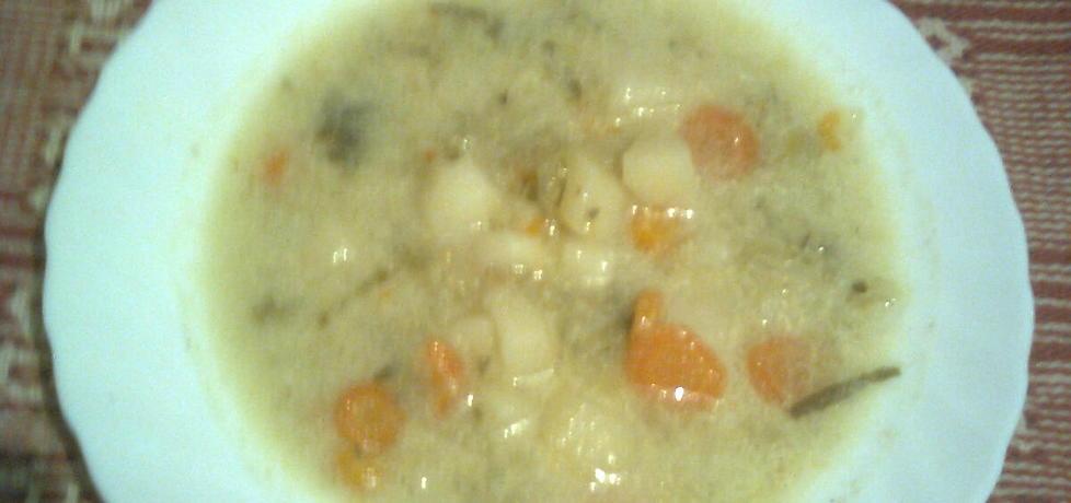 Zupa ogórkowa ze śmietaną (autor: emilia22)