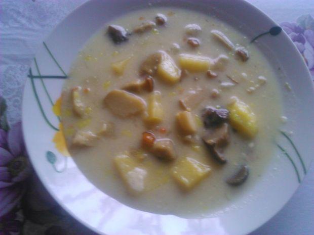 Przepis  zupa borowikowa przepis