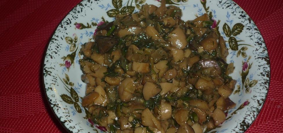 Maślaki duszone z cebulką i koprem (autor: wafelek2601 ...
