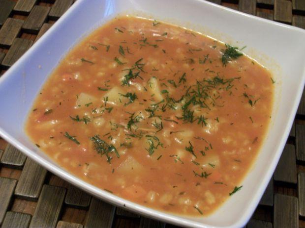 Przepis  zupa pomidorowa z ryżem zub3r'a przepis
